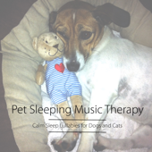 Relaxing Music for Dogs