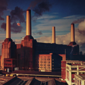 Animals-Pink Floyd