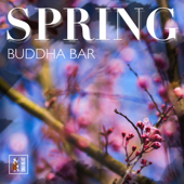 Spring Buddha Bar