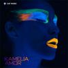 Amor (Radio Edit) - Kamelia