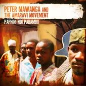 Peter Mawanga and the Amaravi Movement - Kale Kale