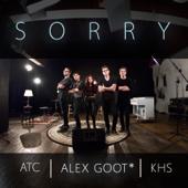 Sorry (feat. Kurt Hugo Schneider & ATC)