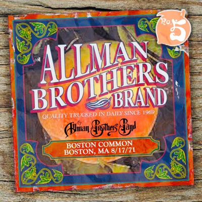 Boston Commons - The Allman Brothers Band