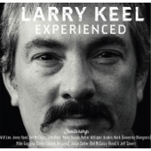 Larry Keel - Another Summer Day (feat. Will Lee, Anders Beck & Jeff Covert)