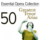 Turandot: Nessun dorma artwork
