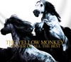 THE YELLOW MONKEY MOTHER OF ALL THE BEST (Remastered) ジャケット写真