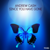 Andrew Cash - Since You Have Gone обложка