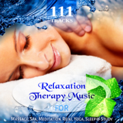 111 Tracks: Over Five Hours Relaxation Therapy Music for Massage, Spa, Meditation, Reiki, Yoga, Sleep and Study, Zen New Age & Healing Nature Sounds - Various Artists - Various Artists