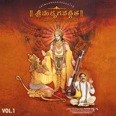 Brahmanyadhaya Karmani