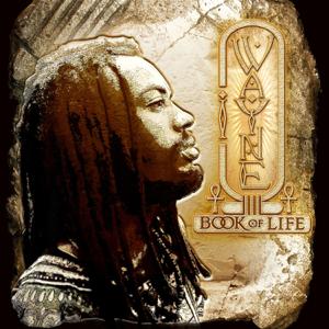 I Wayne - Book of Life