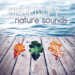 Serenity Nature Sounds