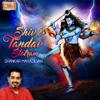 Shankar Mahadevan - Shiv Tandav Stotram artwork