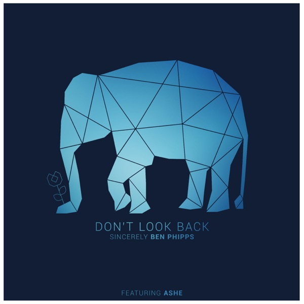Don't Look Back (feat. Ashe) - Single