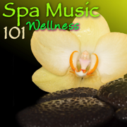 Spa Music 101 Wellness: Amazing Relaxing Sounds for Spas - Spa, Meditation Relax Club & Pure Massage Music - Spa, Meditation Relax Club & Pure Massage Music