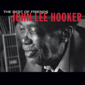 The Healer (feat. Carlos Santana)-John Lee Hooker