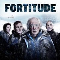 Télécharger Fortitude, Saison 1 (VOST) Episode 11
