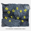 MODERN NATURE: REMIXES ジャケット写真