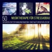 Musiktherapie für Stressabbau: 50 Spuren Entspannungsmusik und Naturgeräusche, Wellness-Spa und Massage Musik zum Meditieren und Einschlafen