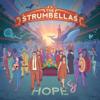 The Strumbellas - Spirits artwork
