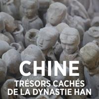 Télécharger Chine : trésors perdus de la dynastie des Han Episode 1