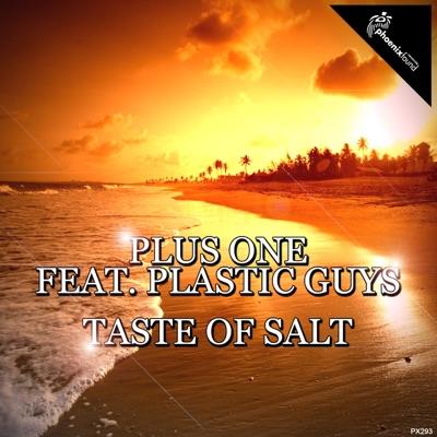 Taste of Salt (feat. Plastic Guys) - Single - Plus One