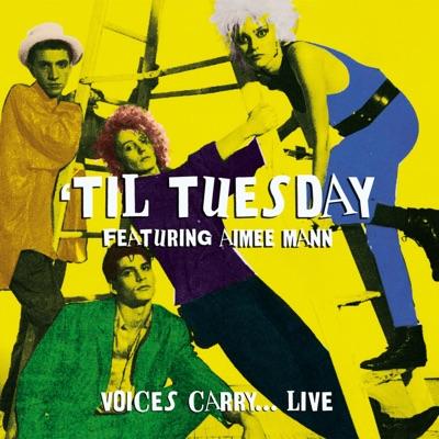 The Spit, Boston, March 1, 1984 (Remastered) [Live FM Radio Broadcast Concert In Superb Fidelity] - Til Tuesday
