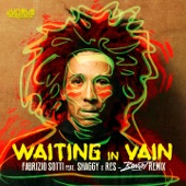 Waiting in Vain (feat. Shaggy & Res) [Bonnot Remix] - Single