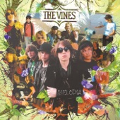 The Vines - Get Out