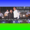 Strig Cat Pot In Gura Mare (feat. Vali Vijelie) - Single, Liviu Pustiu