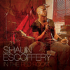 Shaun Escoffery - Perfect Love Affair artwork