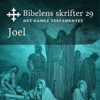 KABB - Joel (Bibel2011 - Bibelens skrifter 29 - Det Gamle Testamentet) artwork