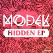 Hidden - Single