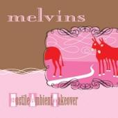 Melvins - The Brain Center at Whipples