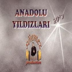 Anadolu Yıldızları 2013