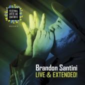 Brandon Santini - No Matter What I Do (Live)