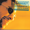 Boombastic - Shaggy