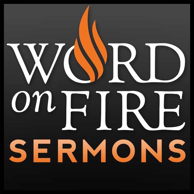 Bishop Robert Barrons Sermons Catholic Preaching And Homilies