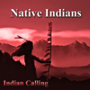 Indian Calling - The Last of His Tribe (Native American Music) artwork