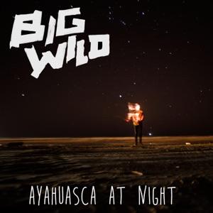 Ayahuasca at Night - Single Mp3 Download