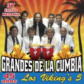 Linda Provinciana / Río Rebelde / Cara Sucia / Paloma Blanca / El Patito - Los Vikings 5