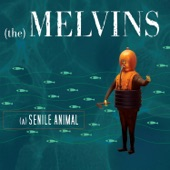 Melvins - A History of Bad Men