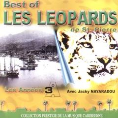 Solido leopardo (feat. Jacky Nayaradou)
