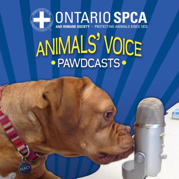 Ontario SPCA - Talking all things animal-related!