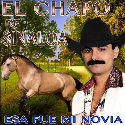 Esa Fue Mi Novia - El Chapo De Sinaloa