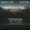 Believe - Mumford & Sons