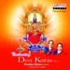 Enchanting Devi Krithis Vol 1