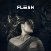 Flesh - The Light
