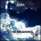 Envine - The Meaning