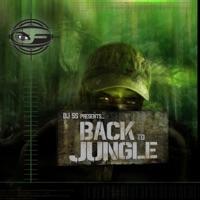 DJ SS Presents: Back to Jungle