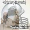 Carolina Panthers - Single